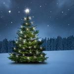 Weihnachtsgedichte in Tannenbaumform